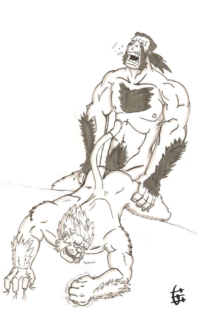 brotherhood alchemist fullmetal Lord marksman and vanadis uncensored