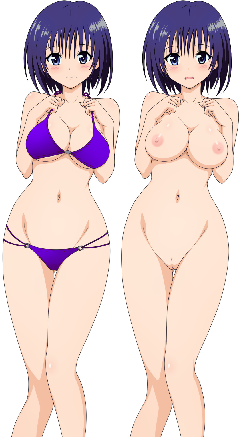 to trouble love-ru High school dxd female characters